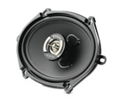 Focal Performance Auditor R-570C